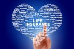 heart with life insurance in the middle surrounded by related life insurance terms